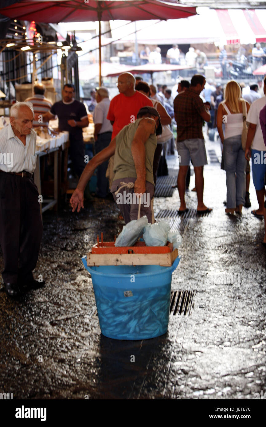 Italy, Sicily, Catania, Old Town, fish market, person, Southern Europe, lane, market, market stalls, sales, fish, Stock Photo