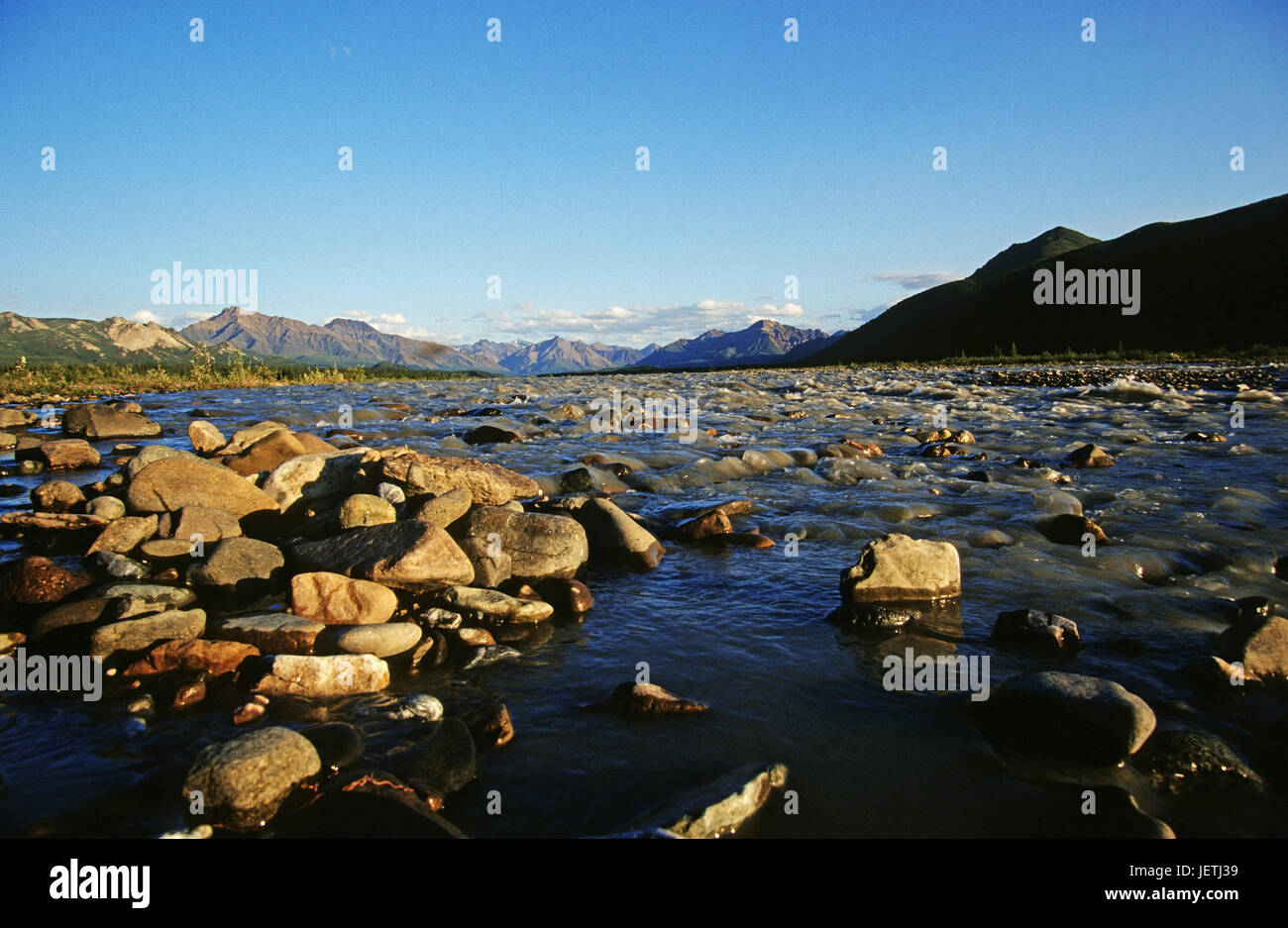 The far branched Teklanika River Alaska to rank, Denali N.P flows from the mountains., Alaska, Der weit verzweigte - Stock Image