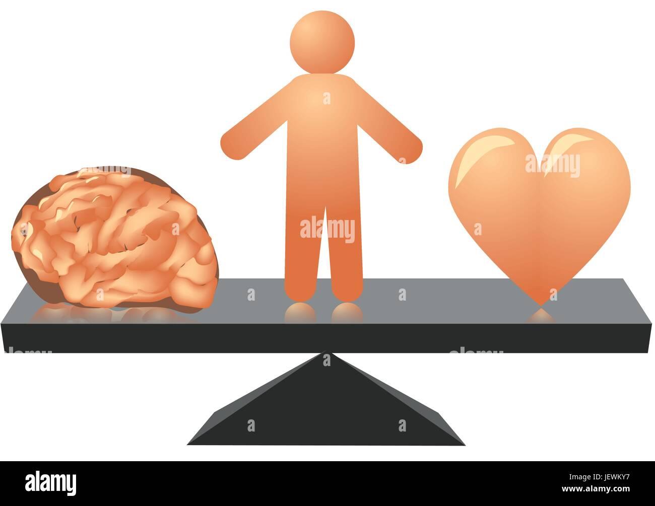 anatomy brain - Stock Vector