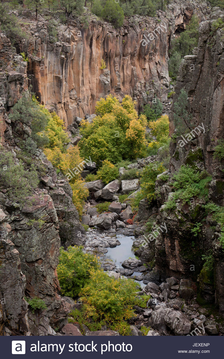 Looking into the head of Sycamore Canyon from the Sycamore Rim Trail in the Kaibab National Forest. - Stock Image