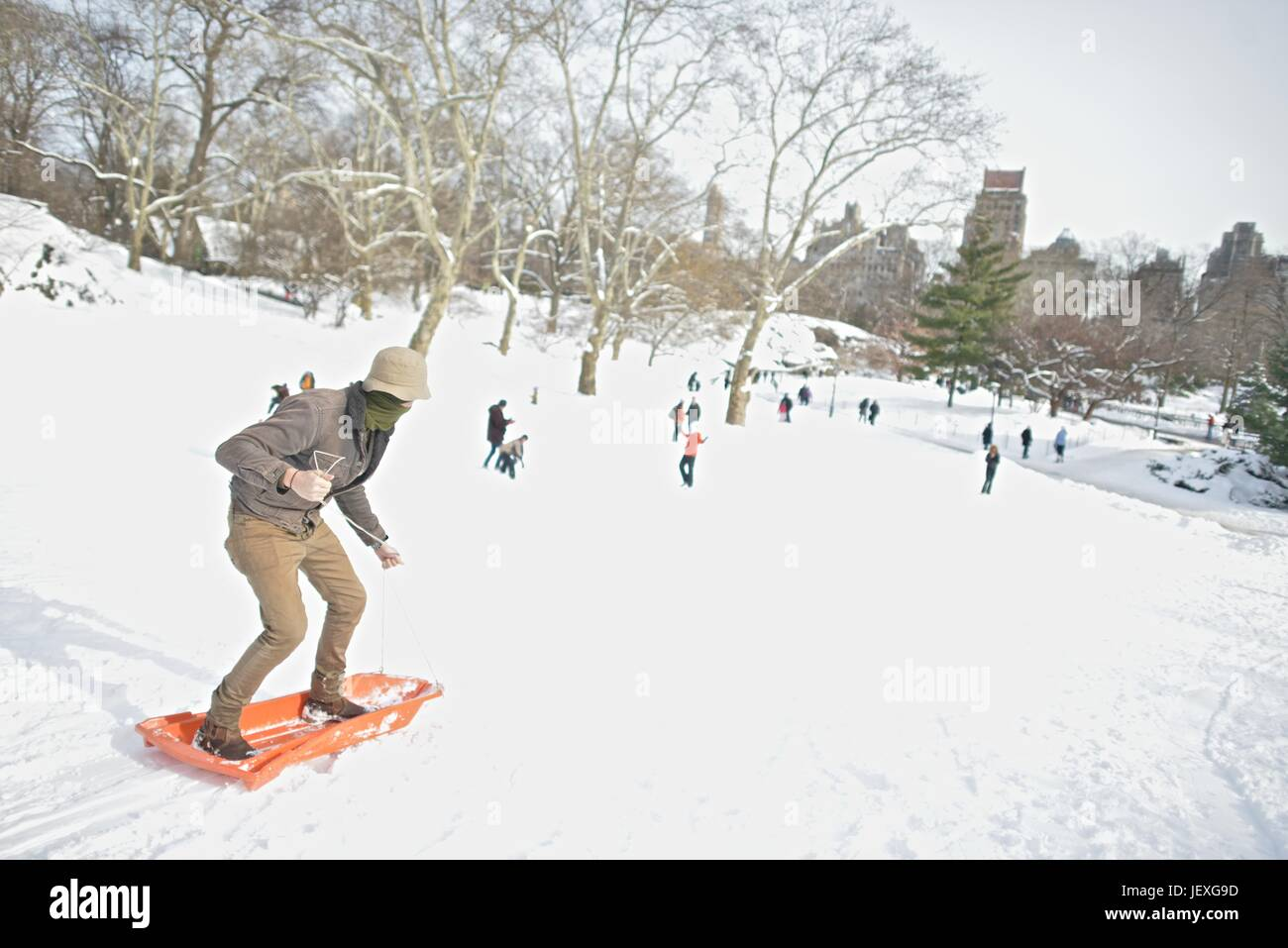 Disney actor, Cole Sprouse, sleds down a slope in Central Park in the aftermath of winter storm Juno. - Stock Image