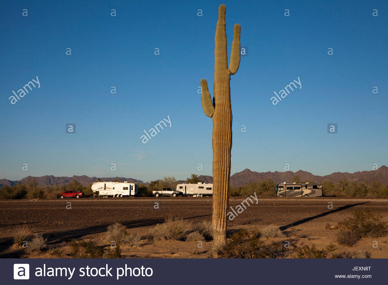 Wintertime visitors in RVs in the Bureau of Land Management's La Posa Long Term Visitor Area south of Quartzsite, - Stock Image