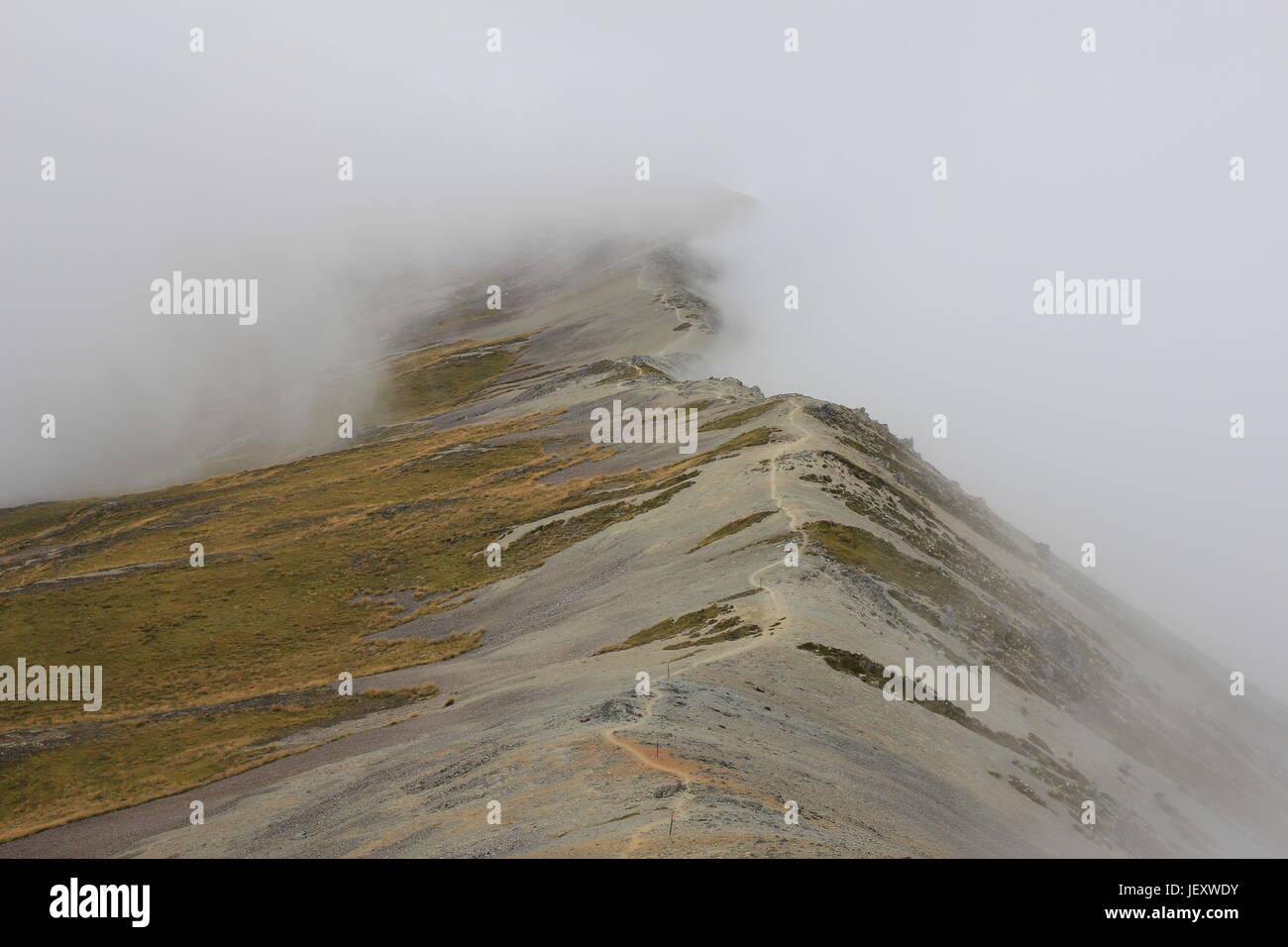 Tramping on a fogy day - Stock Image