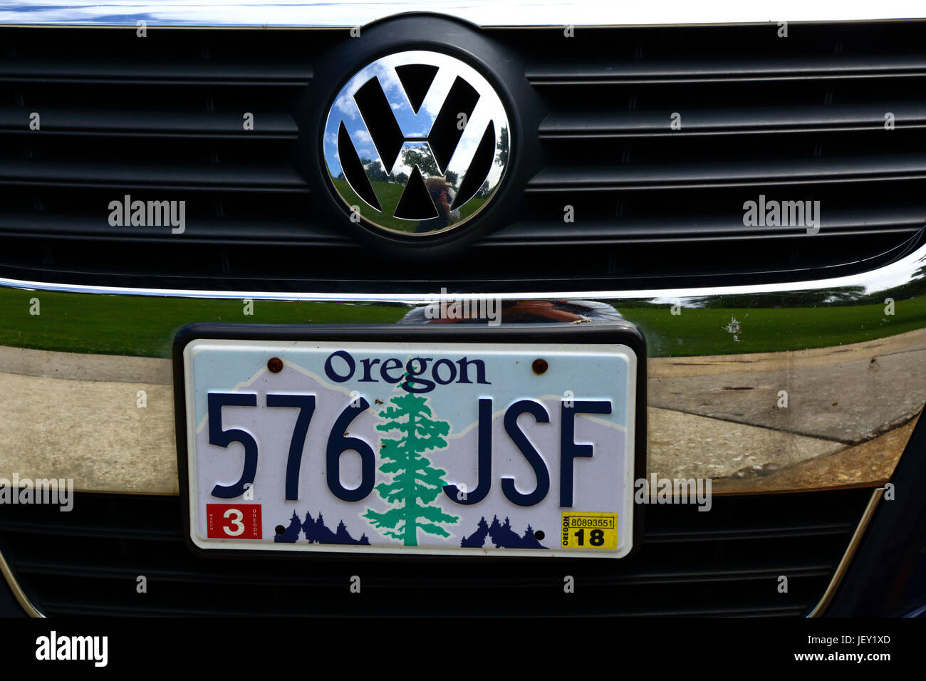 Decorated Oregon State Car License Plate With A Douglas Fir Oregon