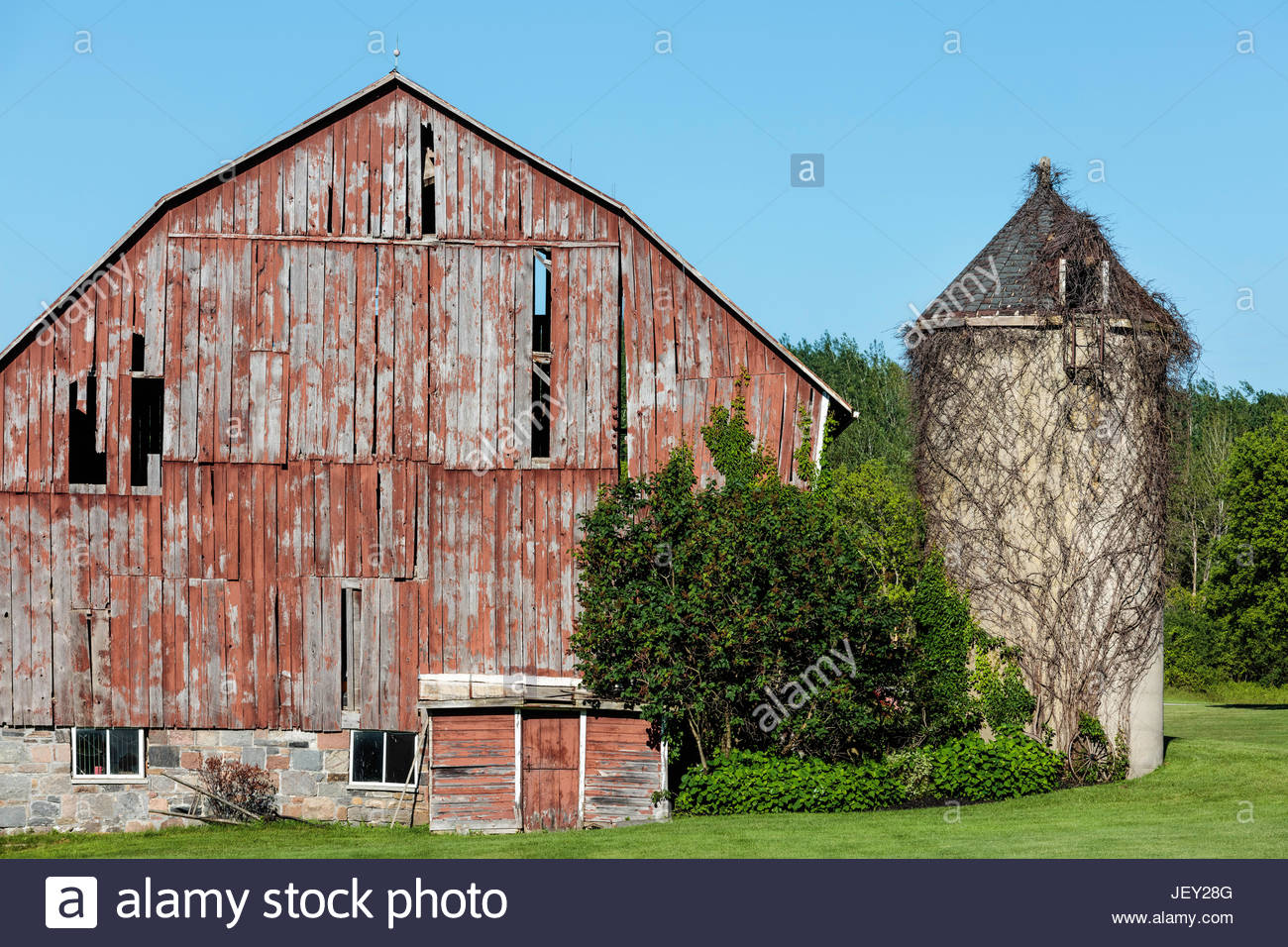 Old barn with attached silo on a farm historic timber framed vertical siding near Goodwood Ontario Canada - Stock Image