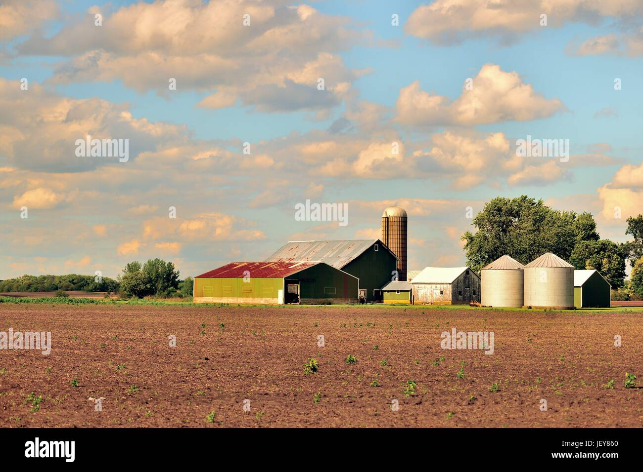 Burlington, Illinois, USA. A variety of farm buildings provide a serene setting on an Illinois farm. - Stock Image