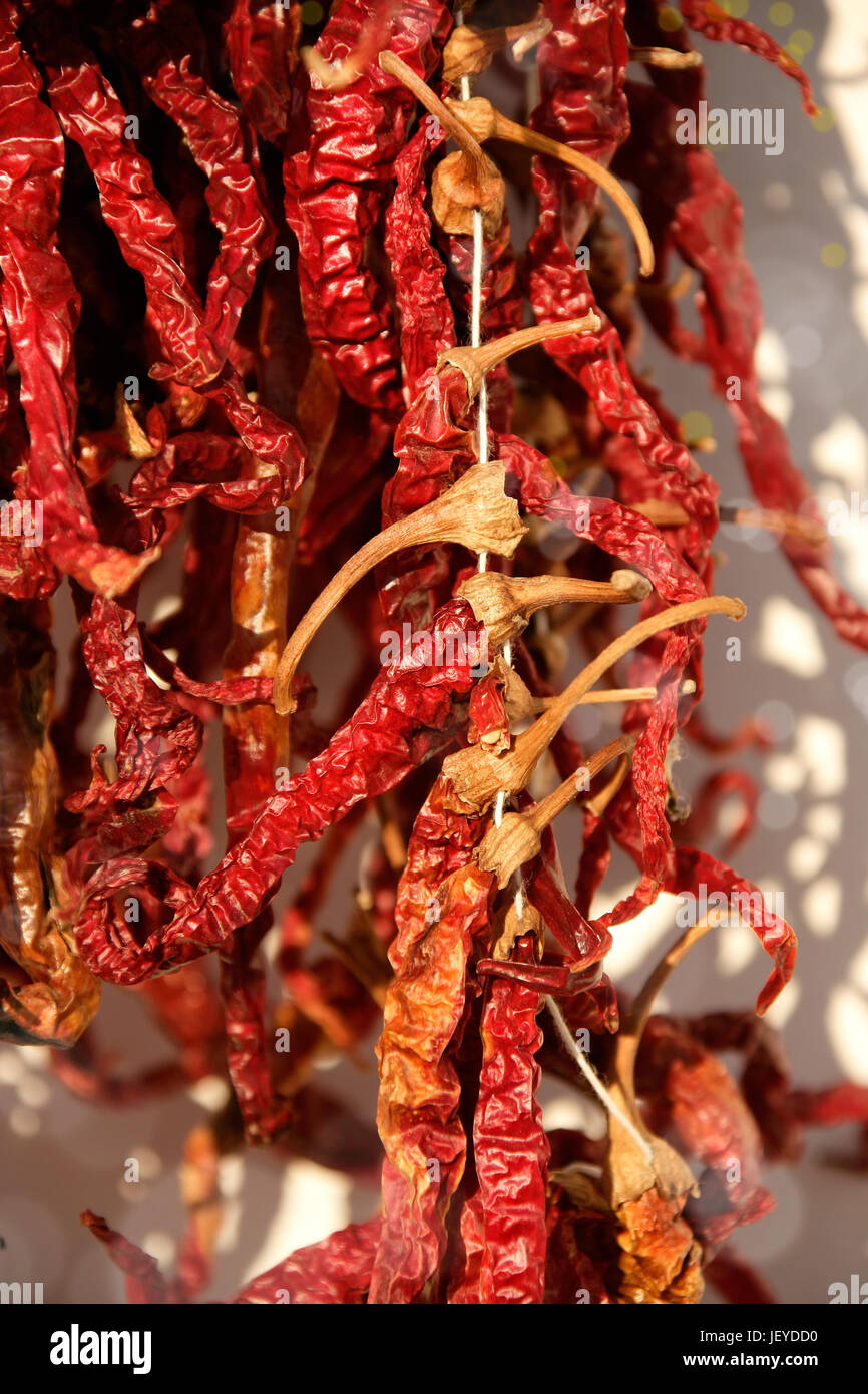 close up shot of dried red peppers - Stock Image