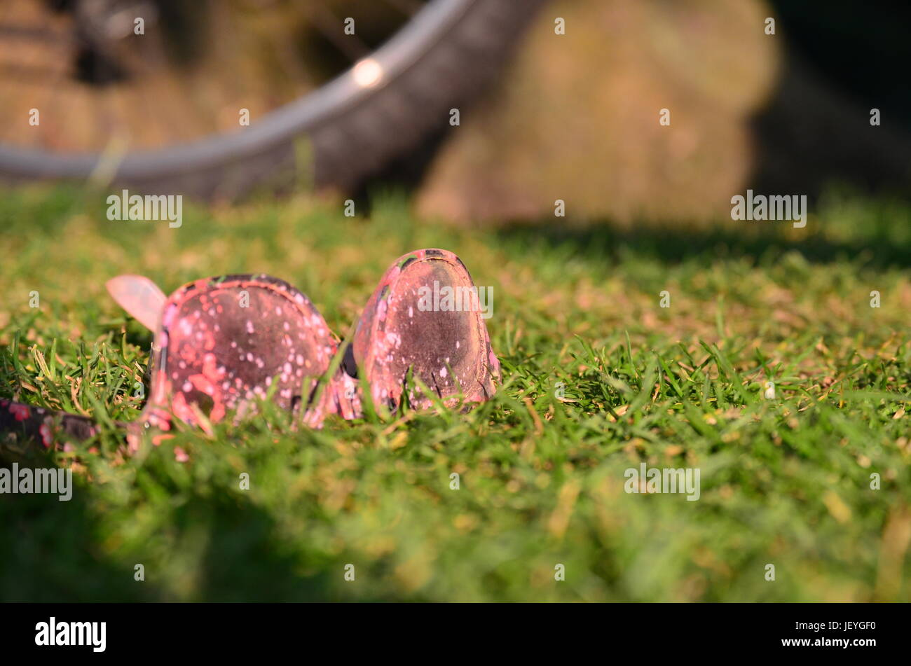 Sunglass sitting on the Grass at Color Summer Festival - Stock Image