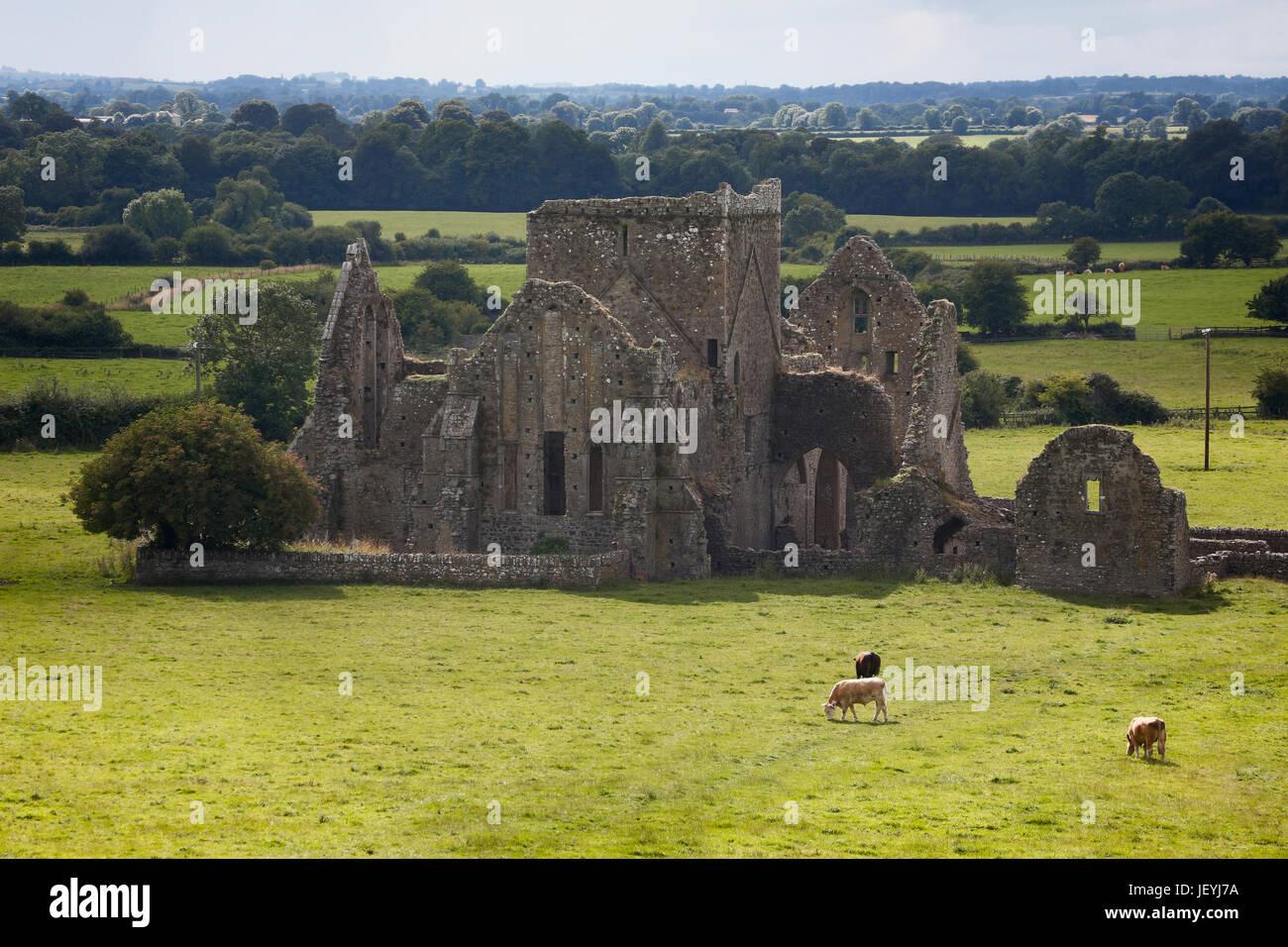 Cashel, County Tipperary, Republic of Ireland.  Ruins of the Cistercian Hore Abbey aka Hoare Abbey or St.Mary's. - Stock Image