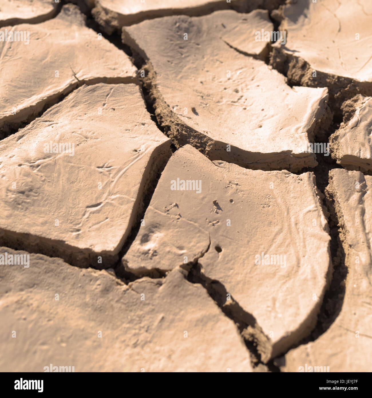 Close up of cracked, dried earth creating an abstract pattern. - Stock Image