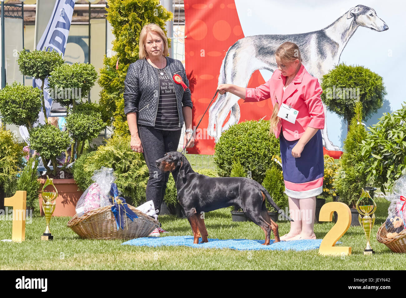 Szczecin, Poland - June 10, 2017: Winner of a junior category with a judge at the 31st West Pomeranian National - Stock Image