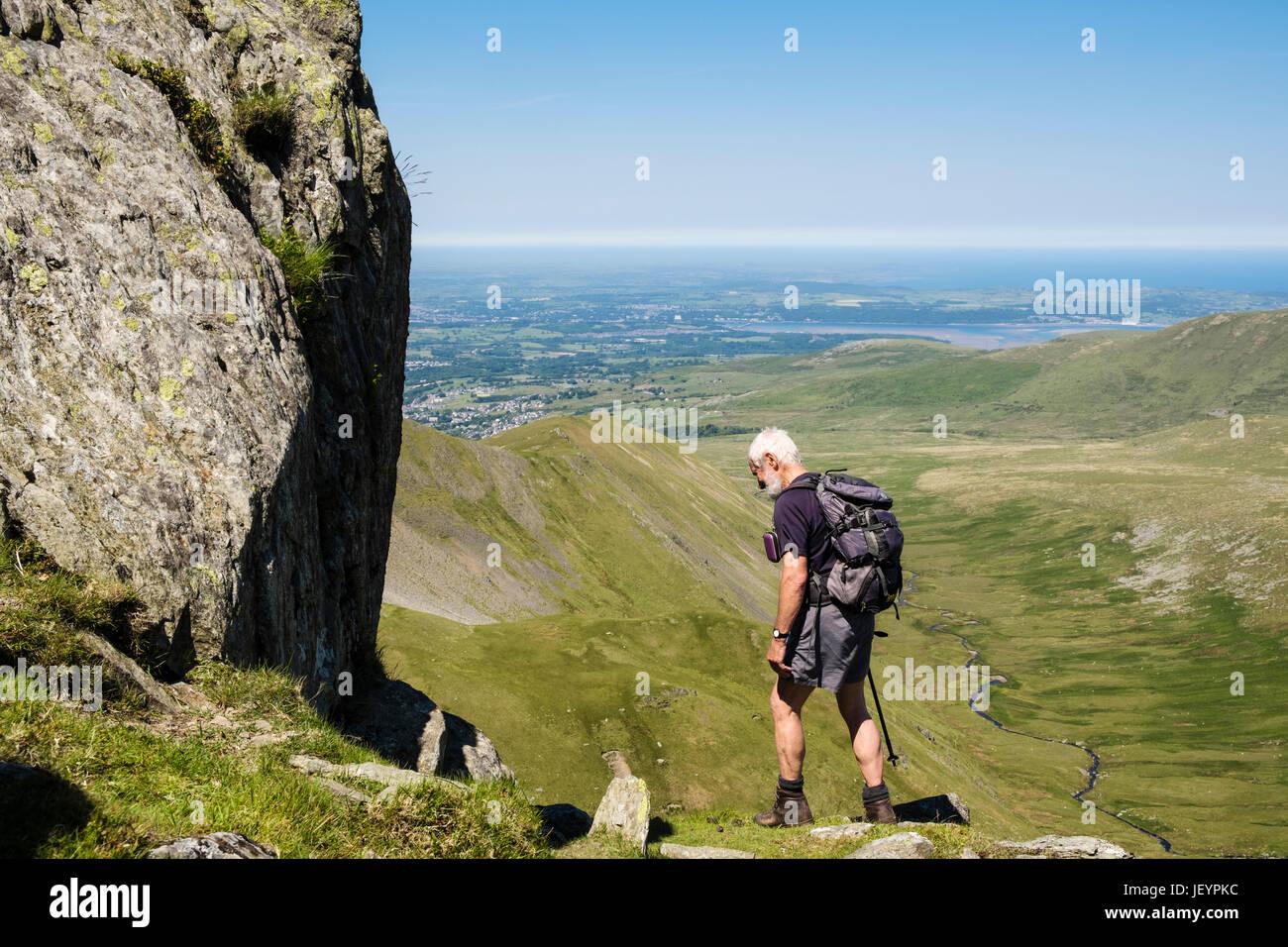 Senior climber scrambling on Llech Ddu spur or Crib Lem on Carnedd Dafydd in Carneddau mountains of Snowdonia National - Stock Image