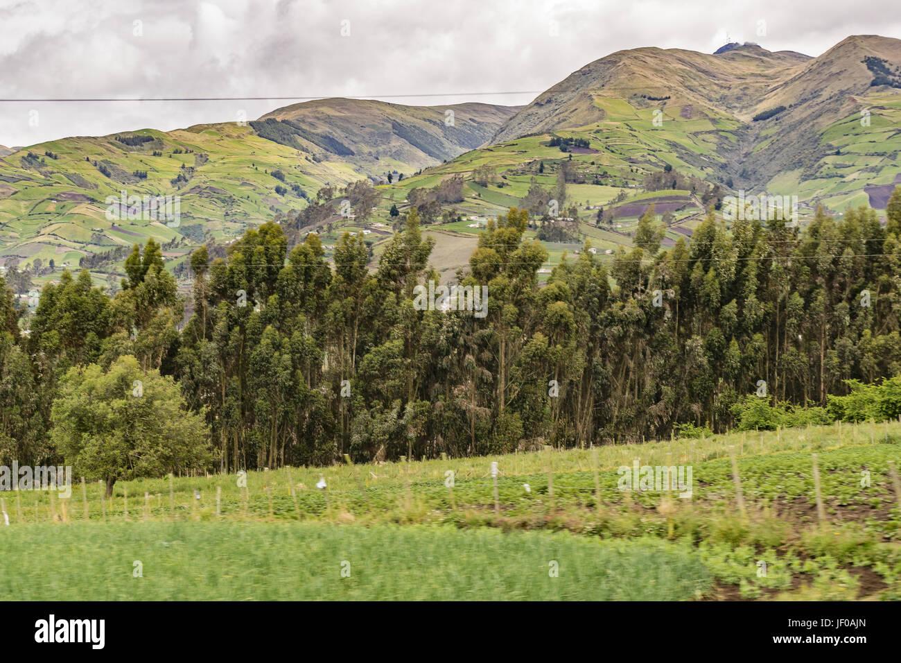 Ecuador Landscape Scene at Andes Range - Stock Image