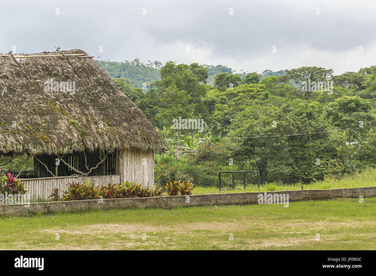 Amazonia Scene in Puyo Ecuador - Stock Image