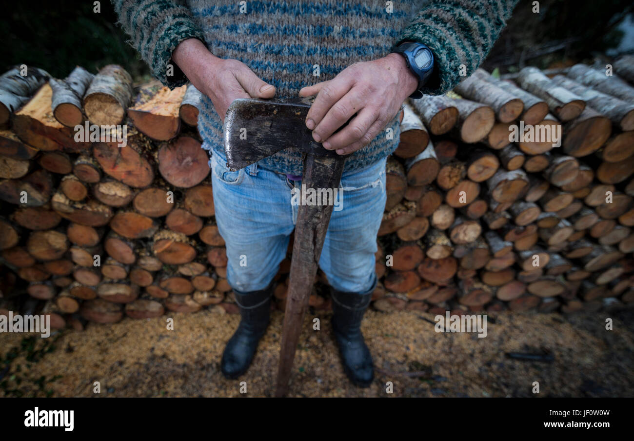 Leñadores del Sarao / Woodcutters - Stock Image