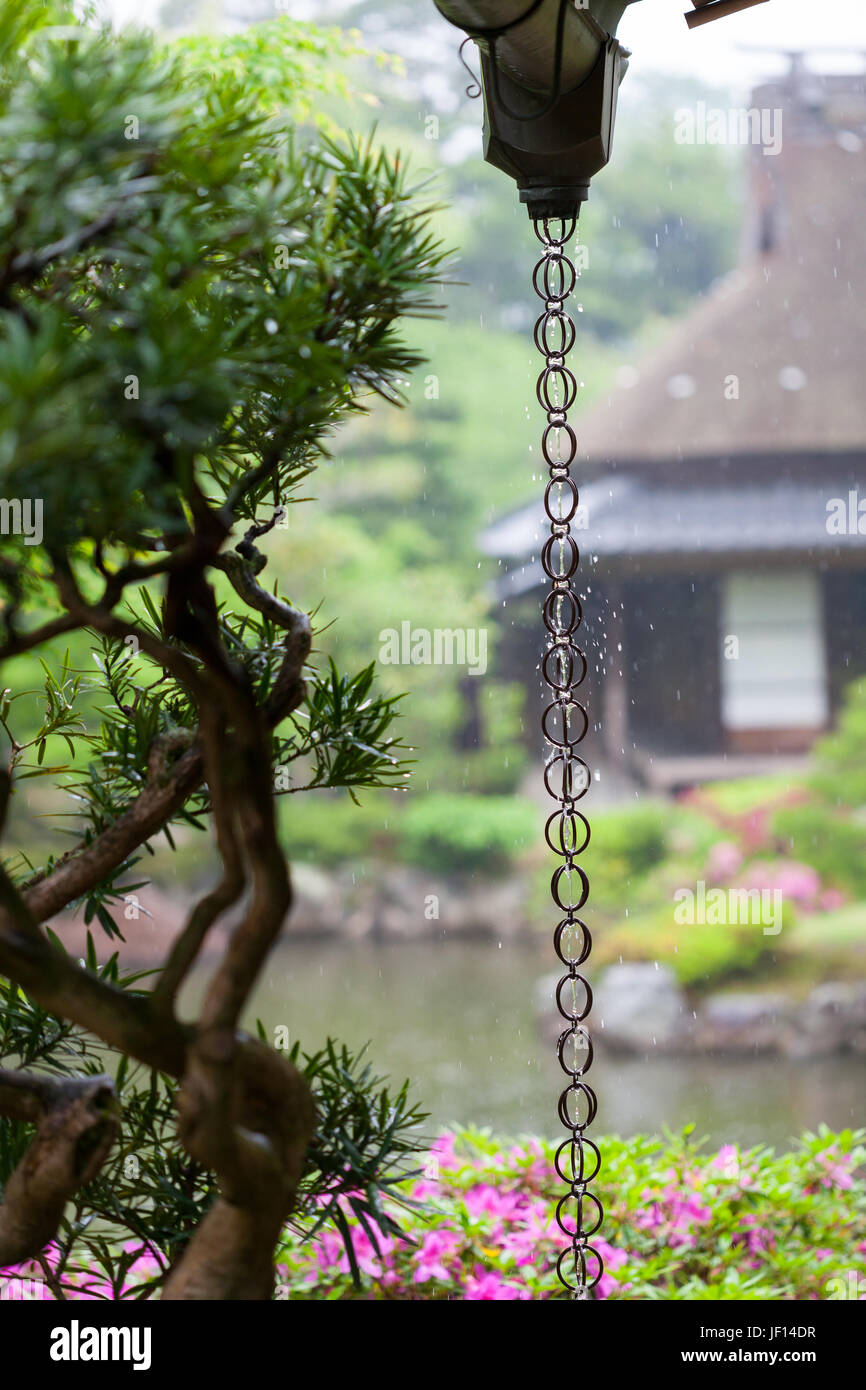 A Japanese rain chain or kusari-doi which is a traditional rain drainage system found in many Japanese temples and - Stock Image
