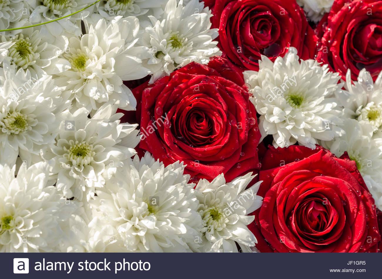 Hochzeitsblumen Stock Photos Hochzeitsblumen Stock Images Alamy