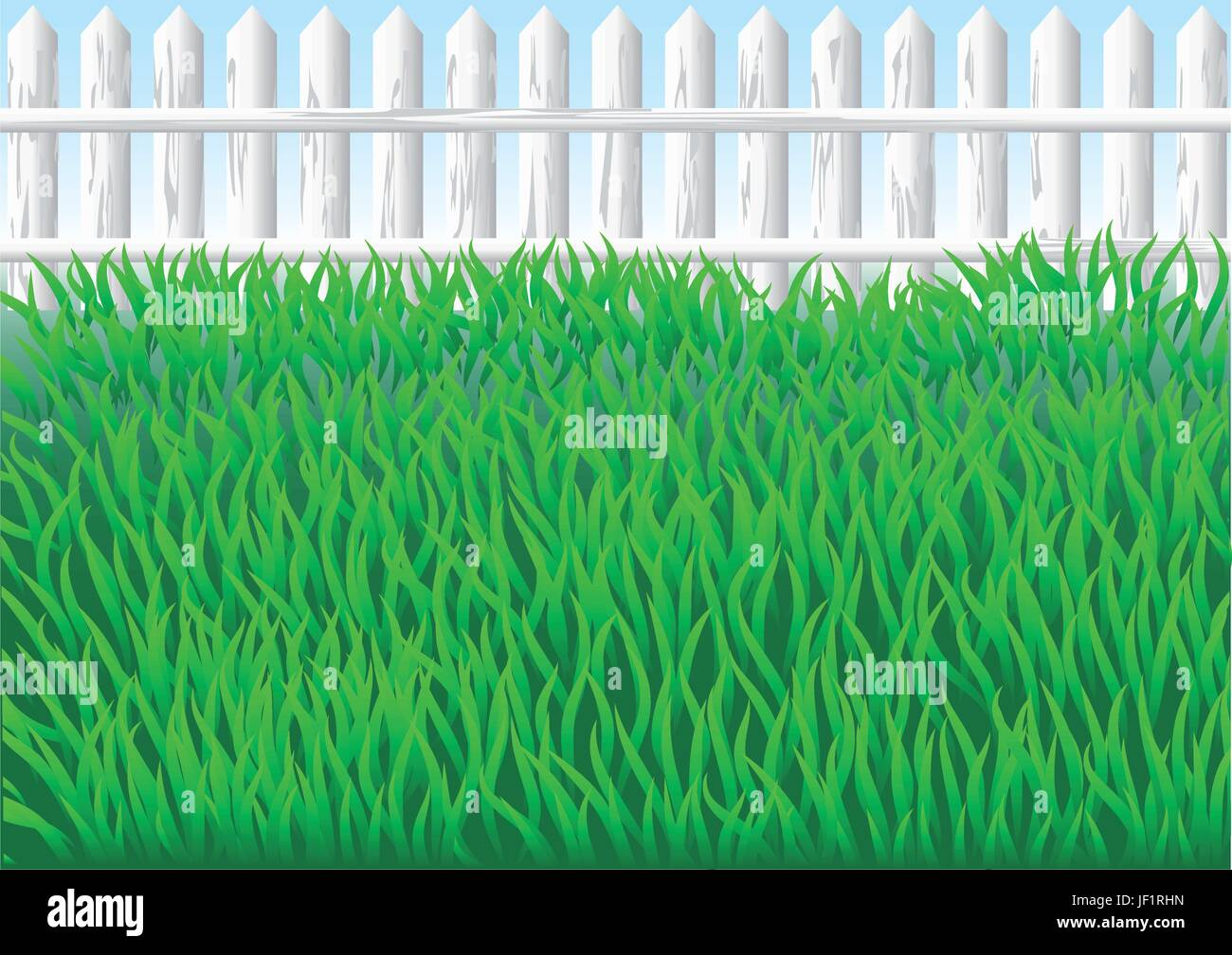 park, garden, field, summer, summerly, spring, outdoor, outdoors, hedge, day, - Stock Vector