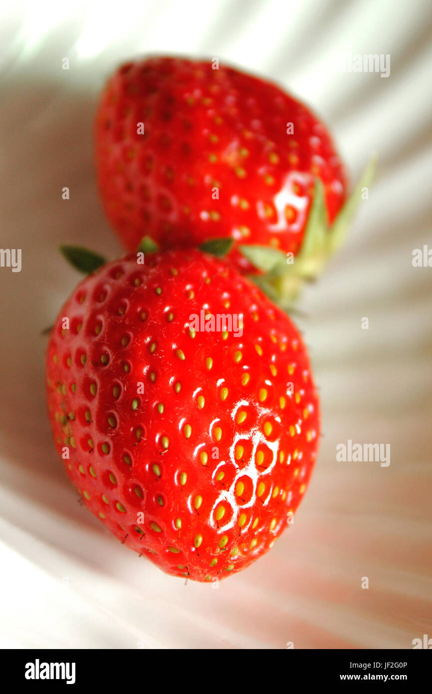 Two juicy freshly picked English strawberries Stock Photo