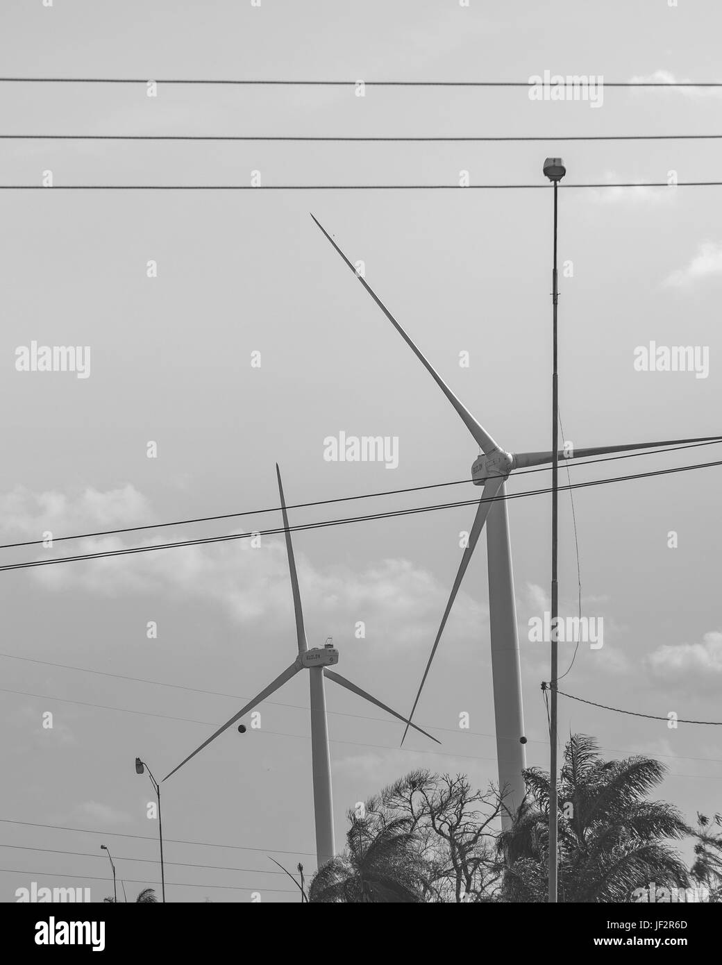 Eolic Windmills Paraiba Brazil Stock Photo