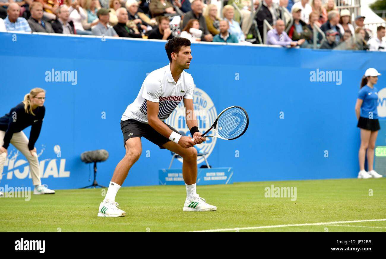 Novak Djokovic of Serbia in action at the Aegon International Eastbourne tennis tournament at Devonshire Park , - Stock Image