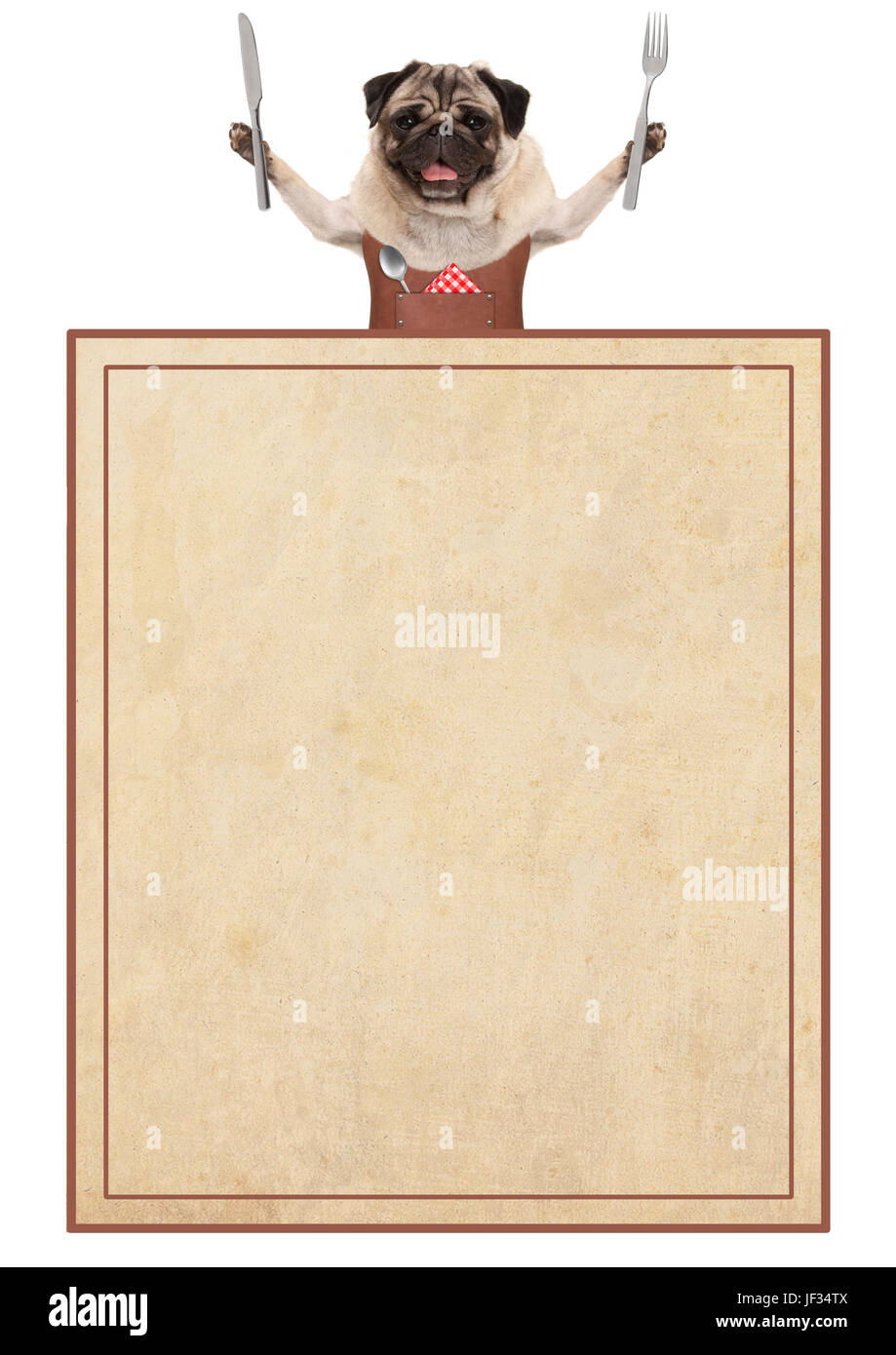 happy pug dog wearing leather bbq apron, holding cutlery for eating, with old vintage paper menu card, isolated - Stock Image