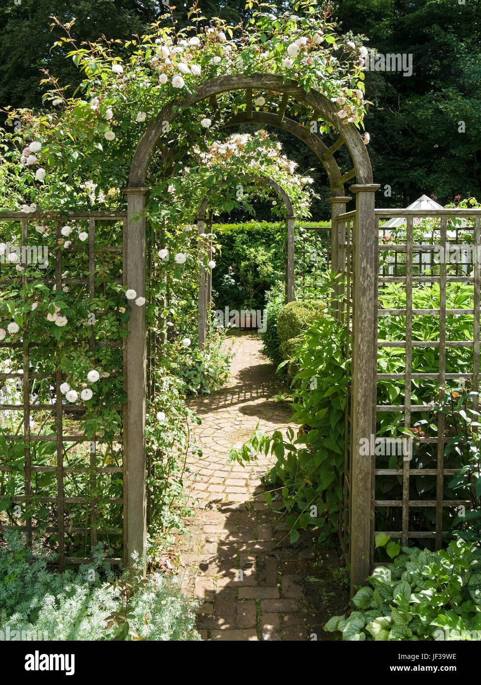Round Topped Wooden Rose Arches And Trellis Over Garden Path Stock