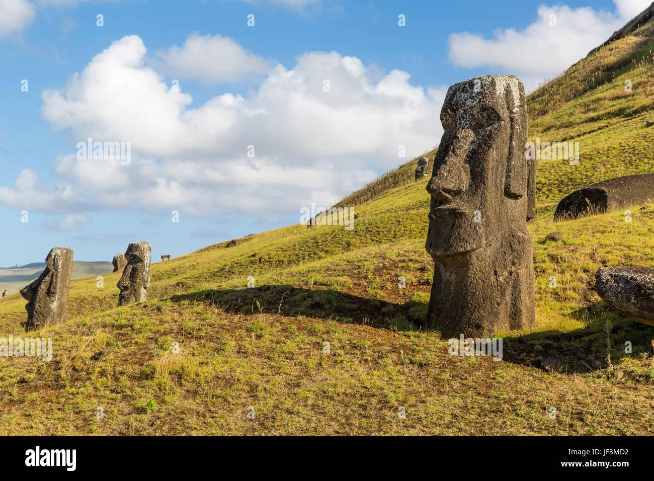 Moai statue at Rano Raraku, Easter Island, Chile - Stock Image
