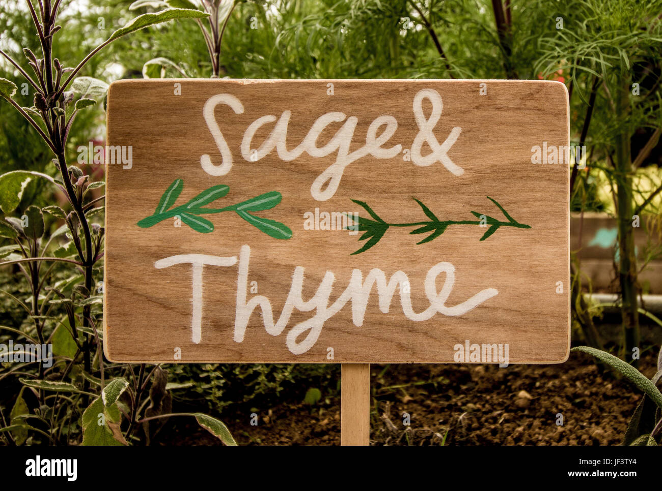 Herd garden sign taken in the garden 2016 Stock Photo: 146988216 - Alamy