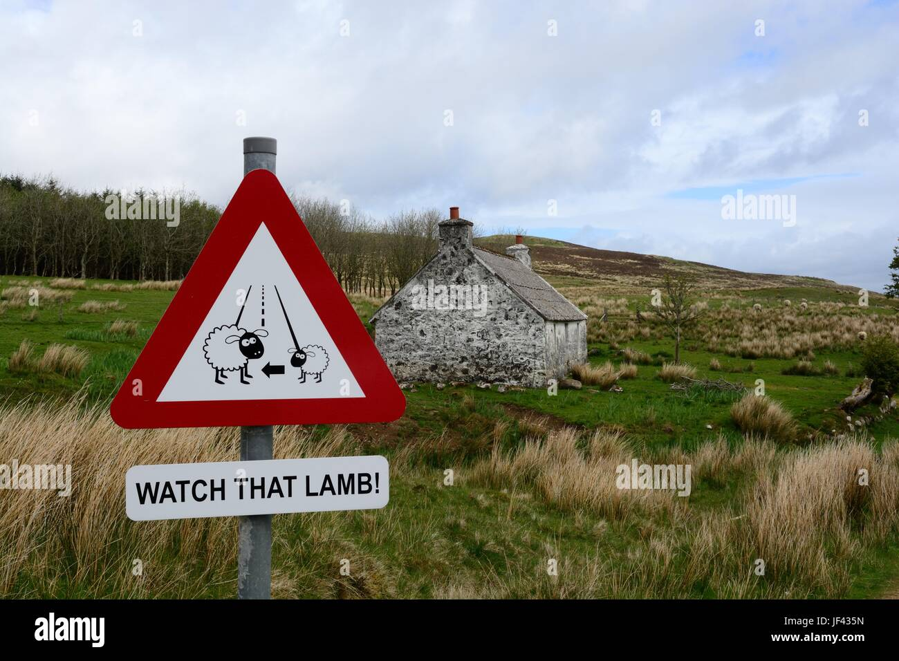 watch that lamb road sign on a country lane Clunacnoc Isle of Skye Scotalnd - Stock Image