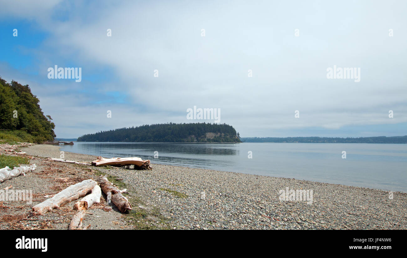 Driftwood on the shore of Shine Tidelands State Park on Bywater Bay near Port Ludlow in the Puget Sound in Washington - Stock Image