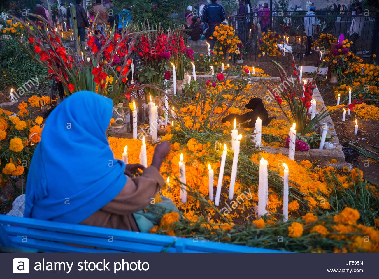 Day Of The Dead Mexico Grave Stock Photos Day Of The Dead Mexico