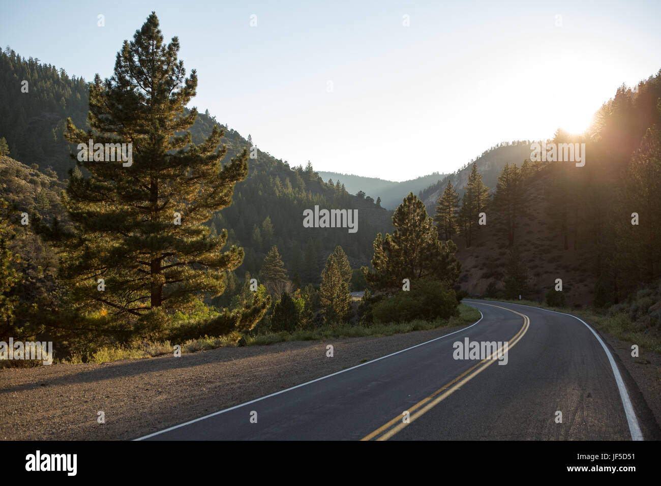 A road curving through mountains as the sun bursts from behind trees. - Stock Image