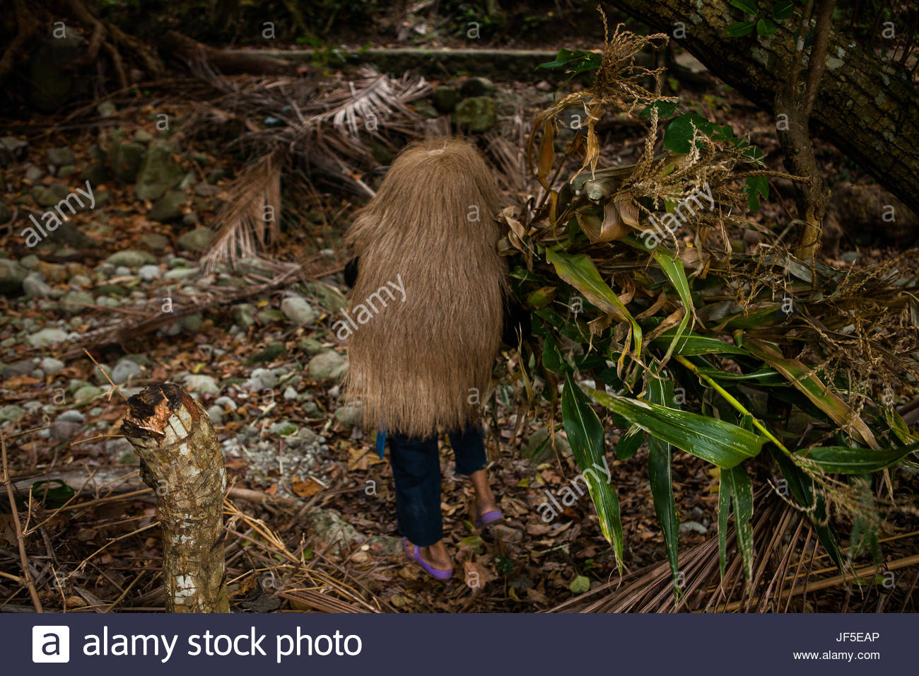 Magencia, an Ivatan woman, wears the vakul--Ivatan headgear used for protection against rain, heat, and wind. Today, - Stock Image