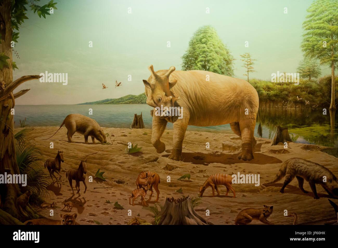 Artist depiction of mammals of the Oligocene epoch, Paleogene period (prehistoric animals, prehistoric mammals - Stock Image