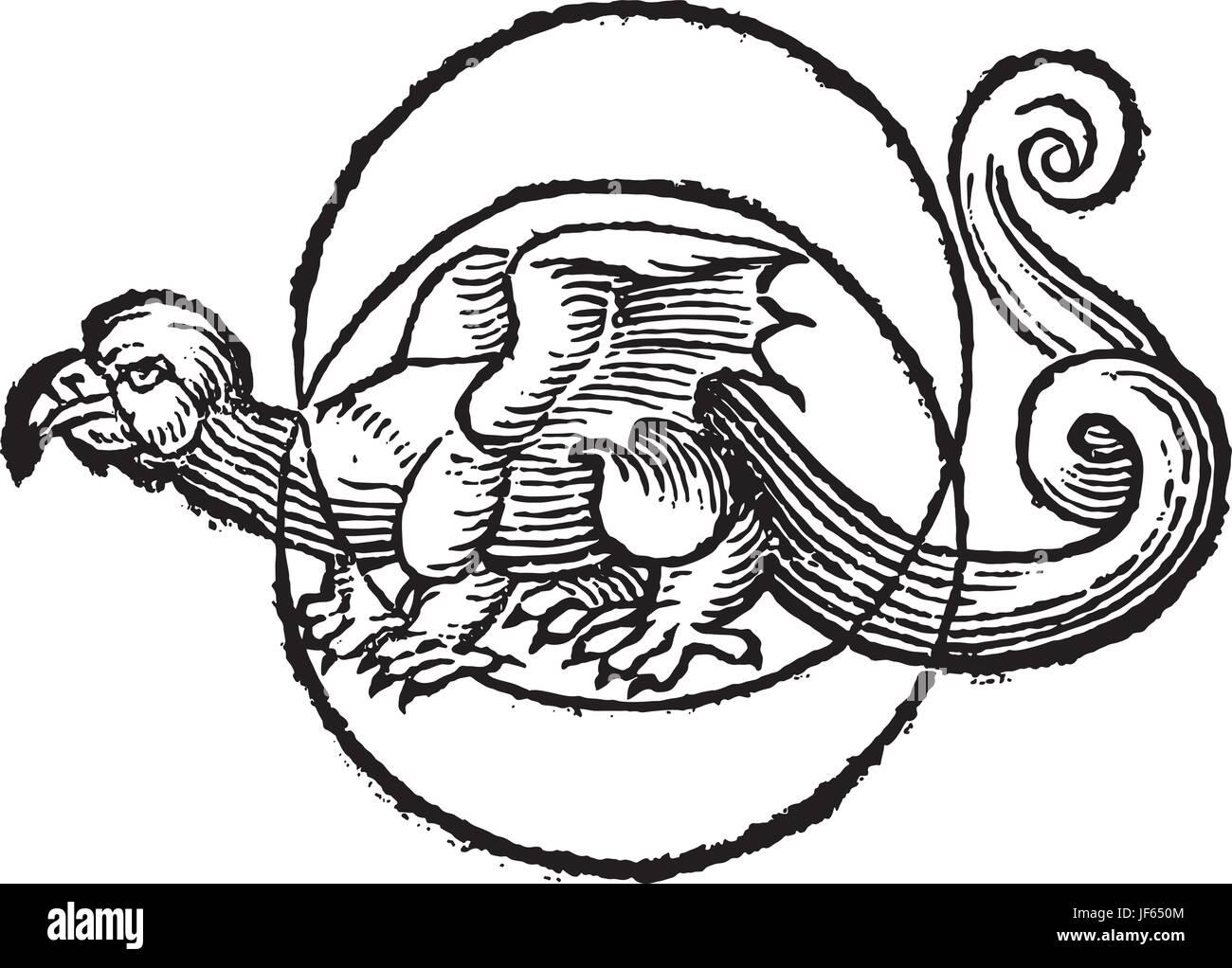 Moon Snake Dragon Pictogram Symbol Pictograph Trade Art