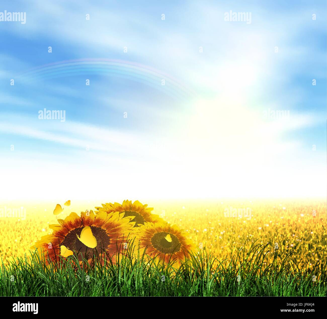 field, summer, summerly, flower, sunflower, plant, rainbow, landscape, scenery, - Stock Vector