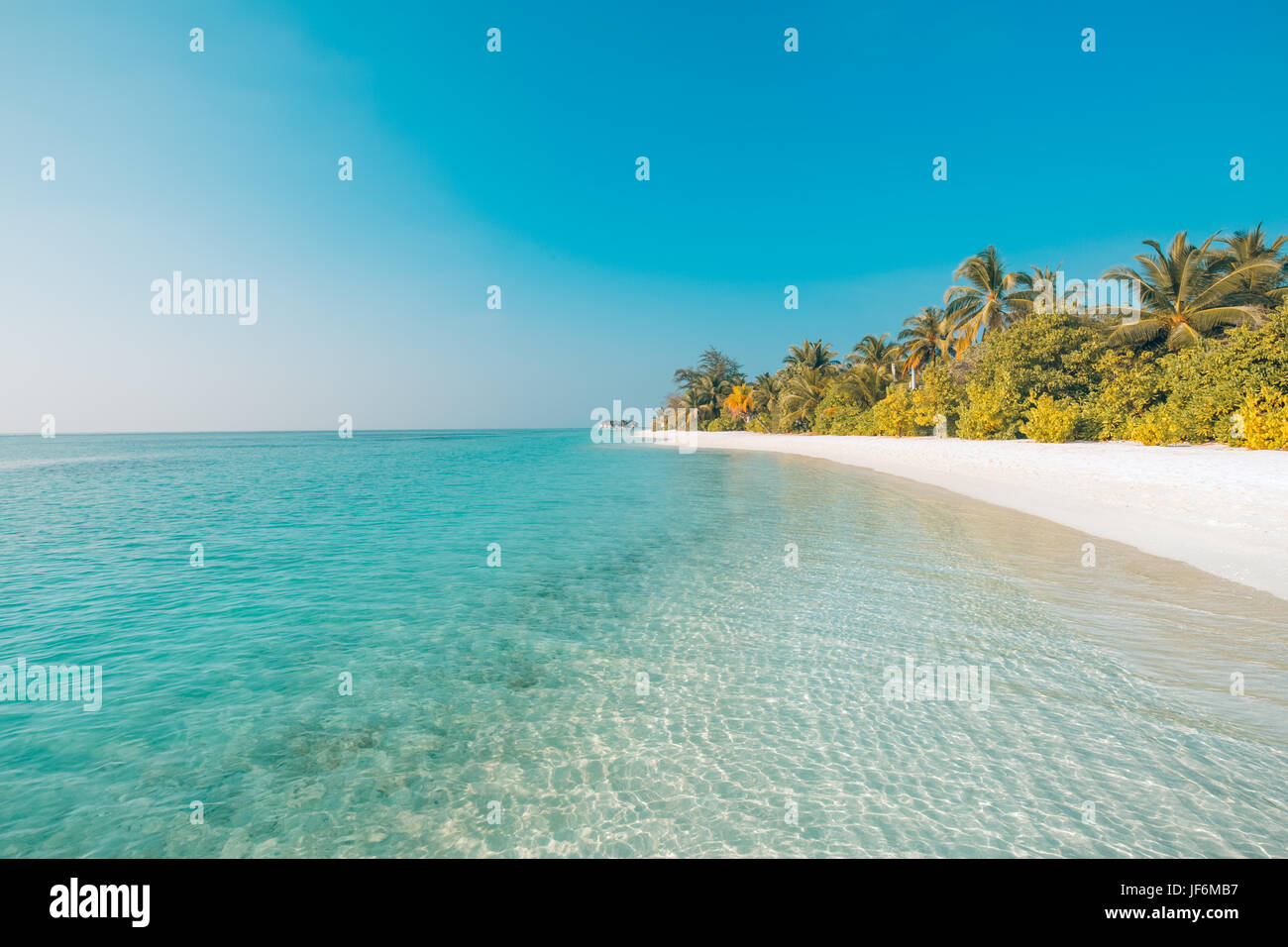 Perfect beach view. Summer holiday and vacation design. Inspirational tropical beach, palm trees and white sand. - Stock Image