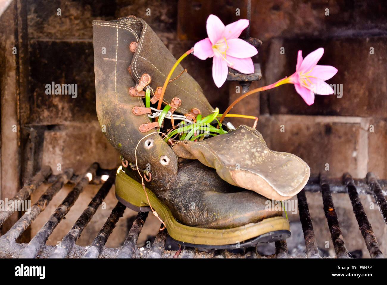Strange Unusual Plant Pot - Stock Image