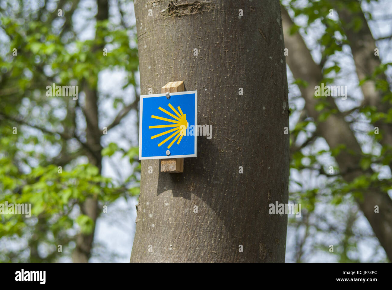 Road to Santiago, Baden-Wuerttemberg, Germany - Stock Image