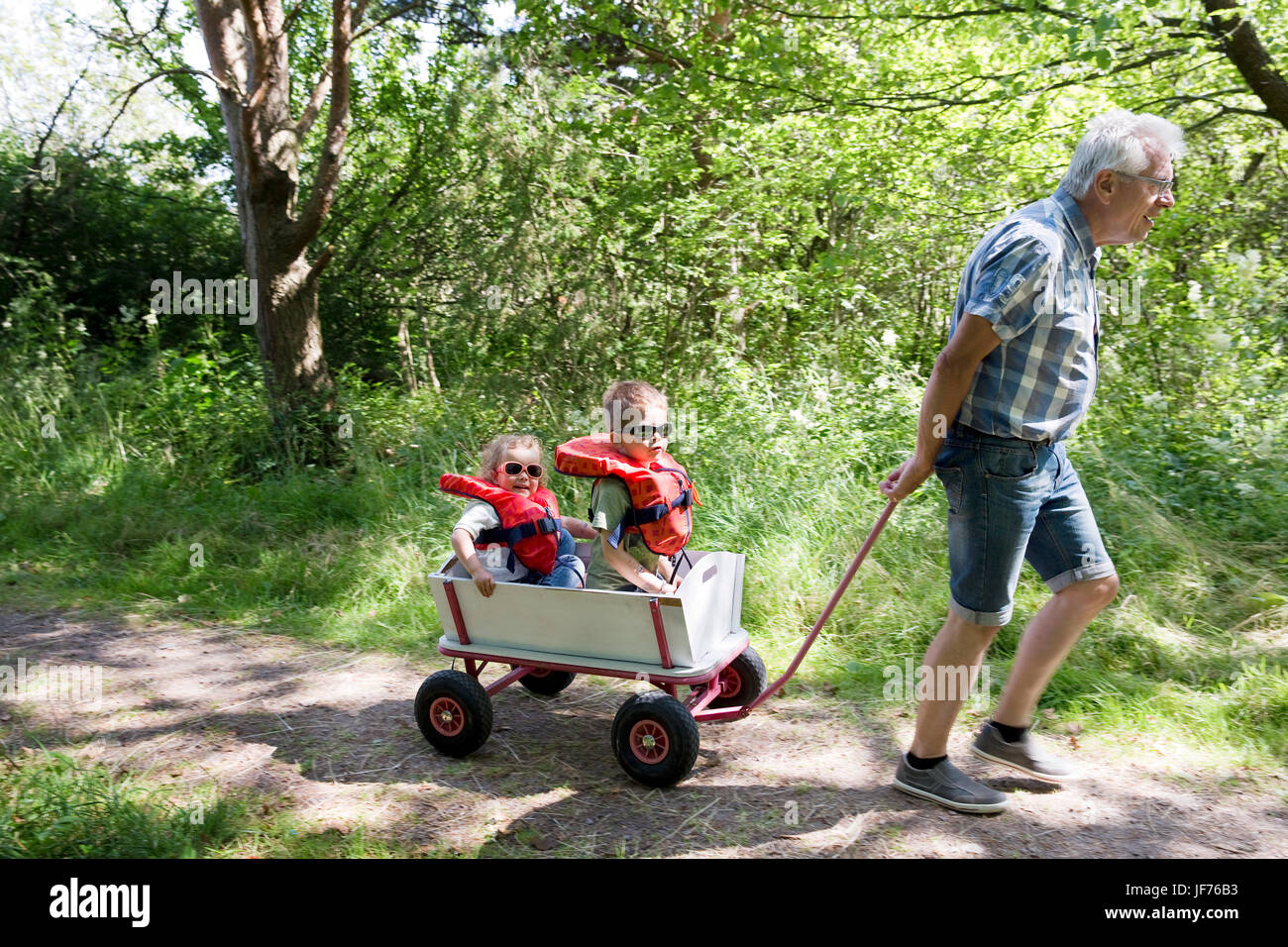 Grandfather pulling children in cart Stock Photo