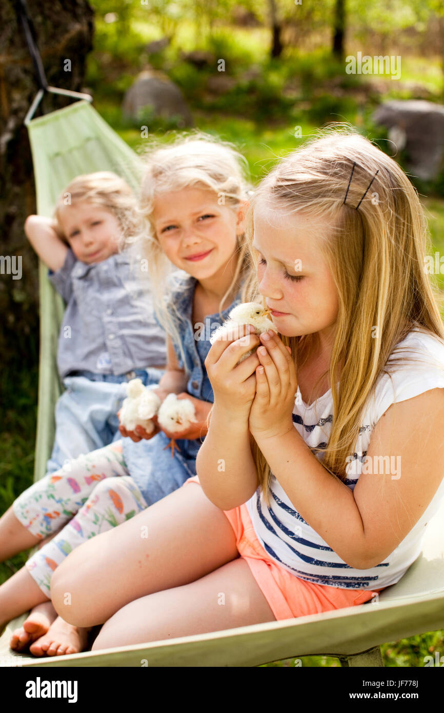 Three girls holding young chickens - Stock Image