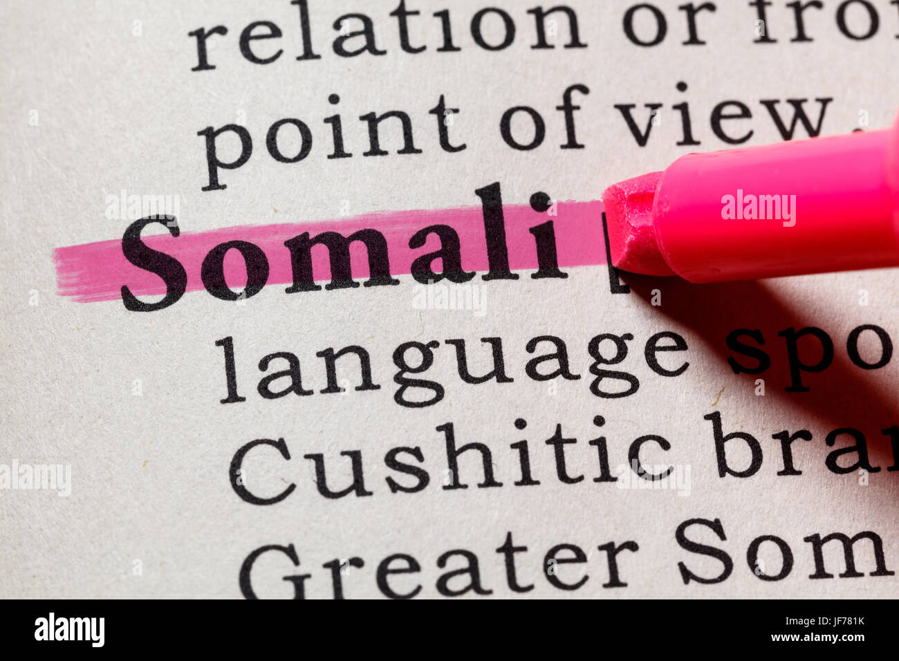 Fake Dictionary, Dictionary definition of the word Somali