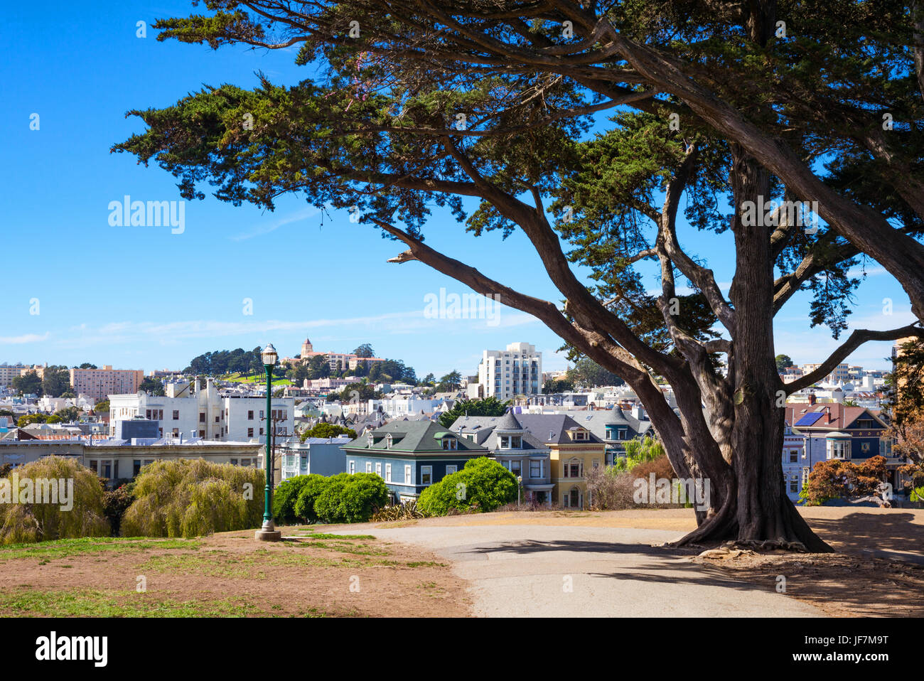 San Francisco, California, the colored traditional houses of Alamo square seen from the park - Stock Image