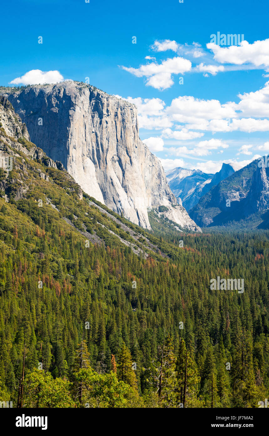 Yosemite National Park, California, panoramic view of the valley with the El Capitan and the Cathedral Spires mountains - Stock Image