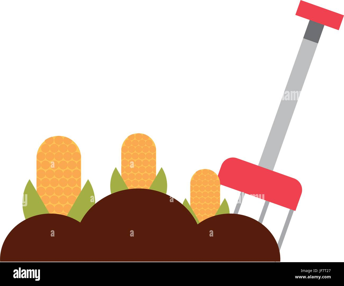 farm rake with corn cultivate - Stock Image