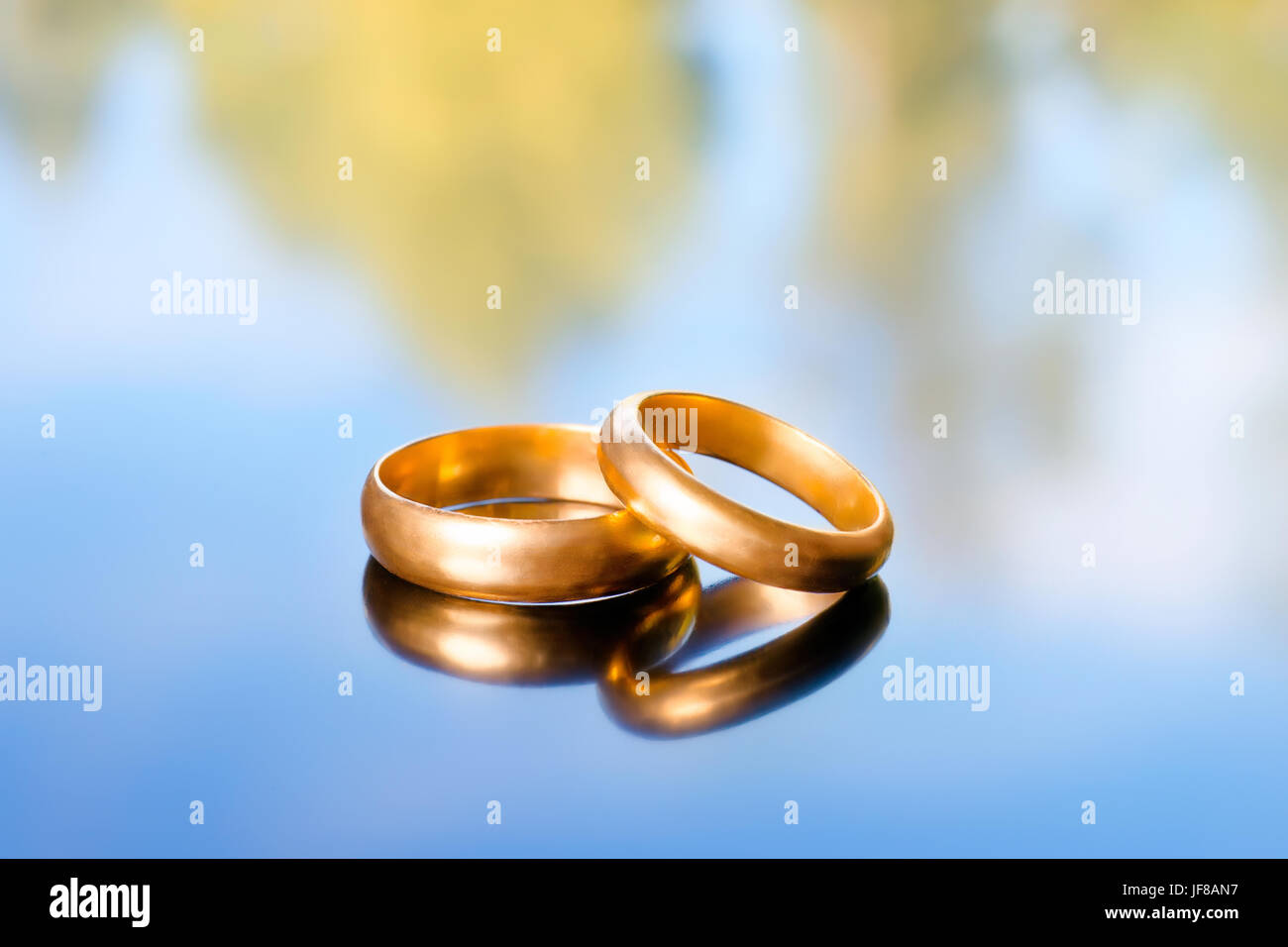 Two Bright Golden Wedding Rings On Abstract Nature