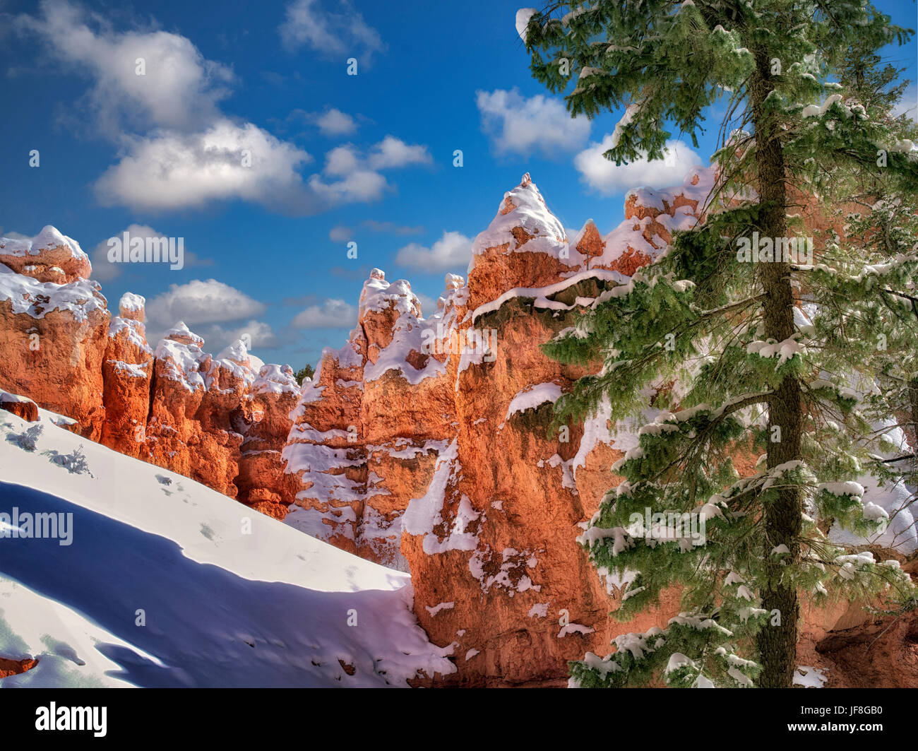 Snow in Bryce Canyon National Park, Utah - Stock Image