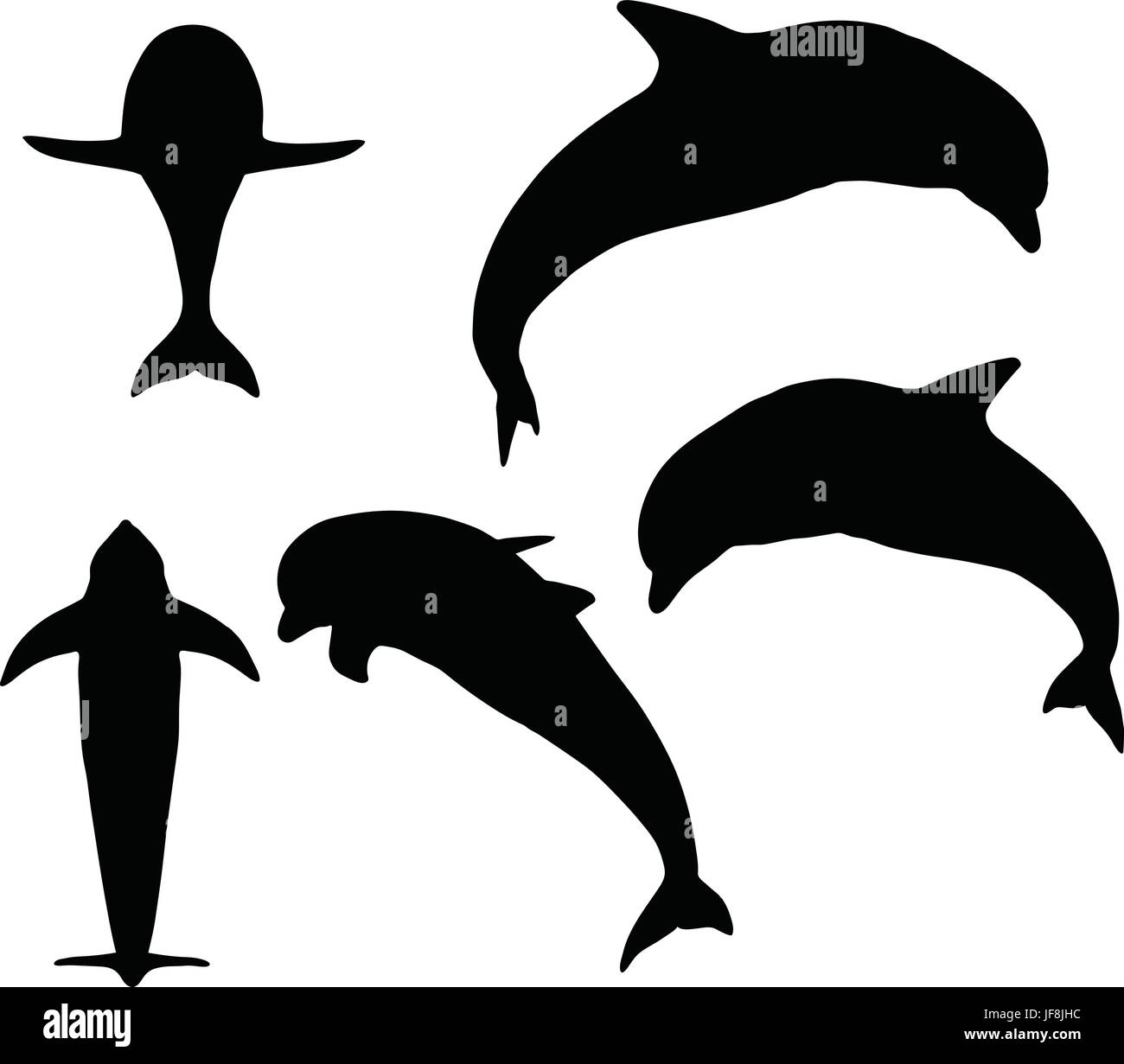 Dolphin Silhouette Isolated Stock Vector Image Art Alamy Silhouette set featuring 4 dolphins in different angles and poses. alamy