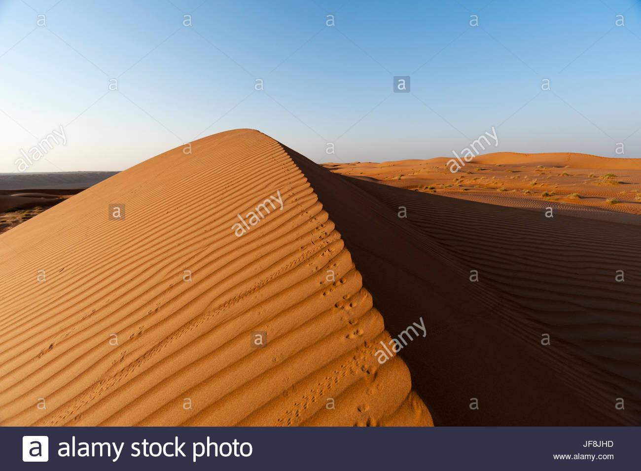 Footprints along the ridge of a sand dune at sunset. - Stock Image